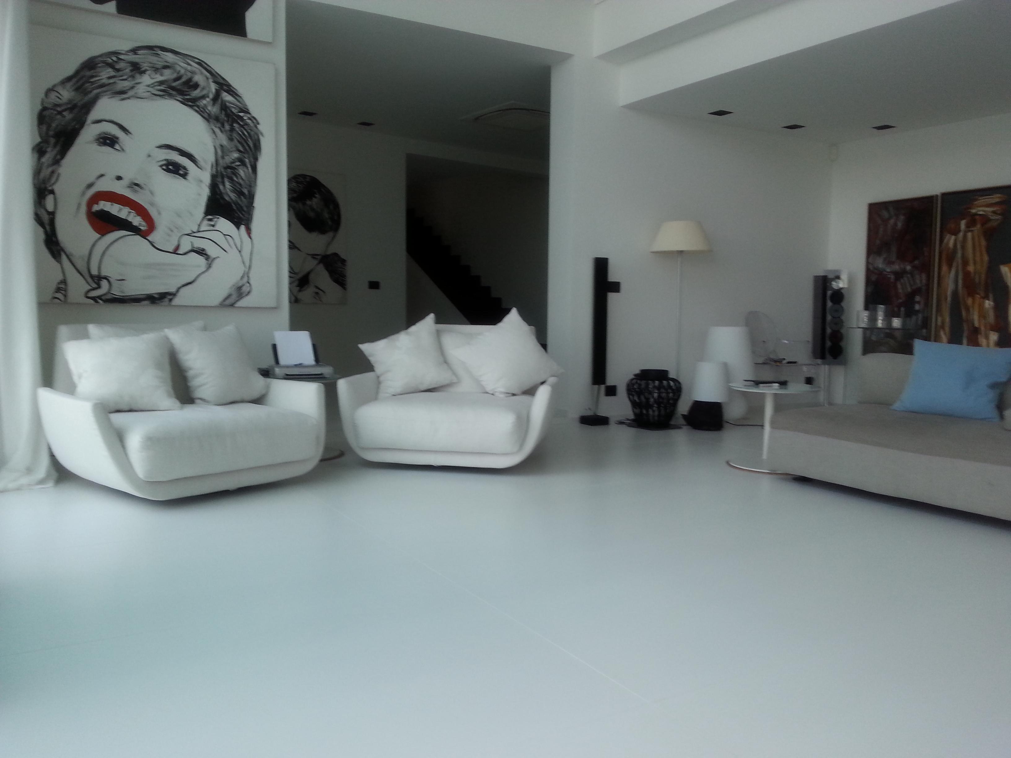 penture interieur Monaco